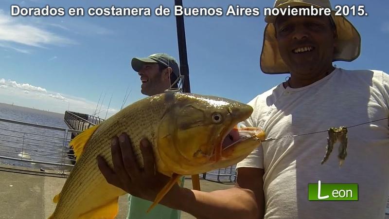 PESCA de Dorados en Ciudad Universitaria Como Pescar Dorados Leon pesca