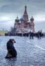 Личный фотоальбом Александра Волочиенко
