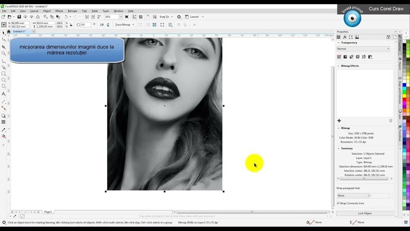 Curs intensiv Corel Draw Lens Effect