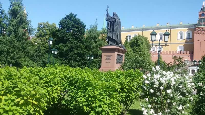 Александровский сад 2020