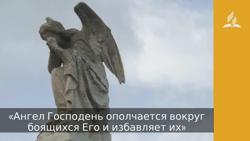 Ангелы на страже Дорога мудрости и вдохновения