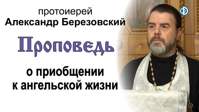 Проповедь о приобщении к ангельской жизни 2020 11 20 Протоиерей Александр Березовский