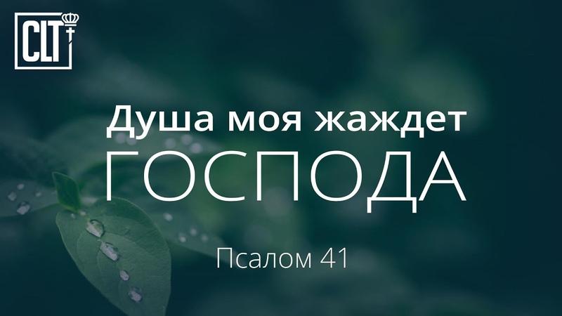 Душа моя жаждет Господа Псалом 41 Библия