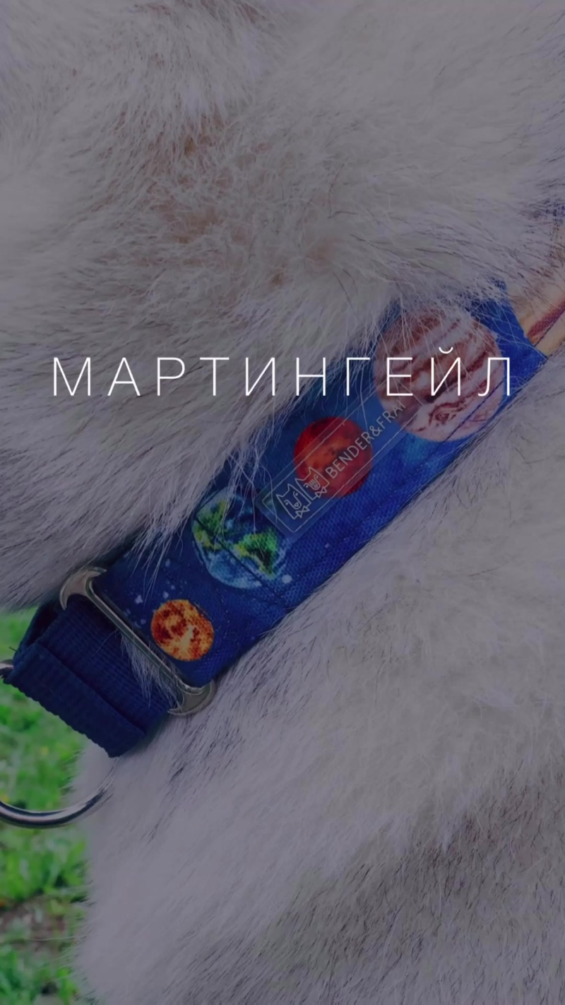 МАРТИНГЕЙЛ
