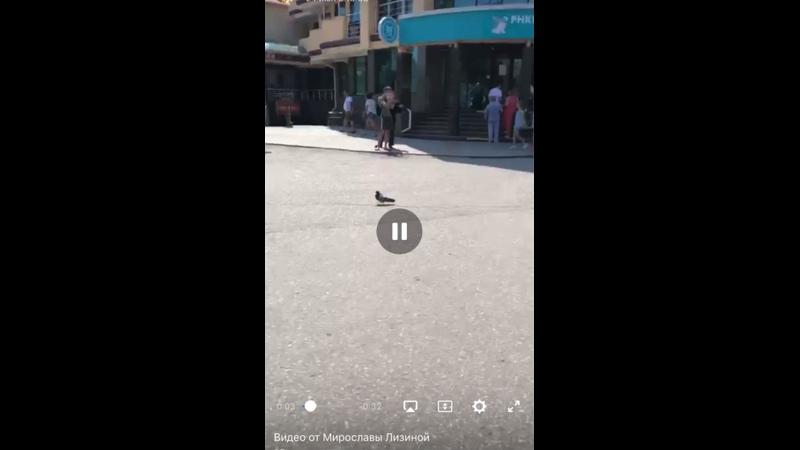 Видео от Мирославы Лизиной