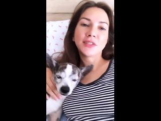 Лиза Заикина и Шера 💛
