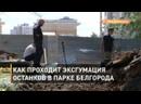 Как проходит эксгумация останков в парке Белгорода