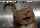 Фотоальбом Александра Затевалова