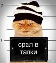 Фотоальбом Михаила Никулина