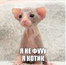 Персональный фотоальбом Анатолия Рудого