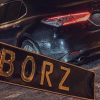 BorzBoss