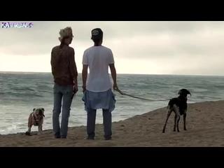 "Tokio Hotel - ""Feel It All"" (Kaulitz Twins by Katrin)"