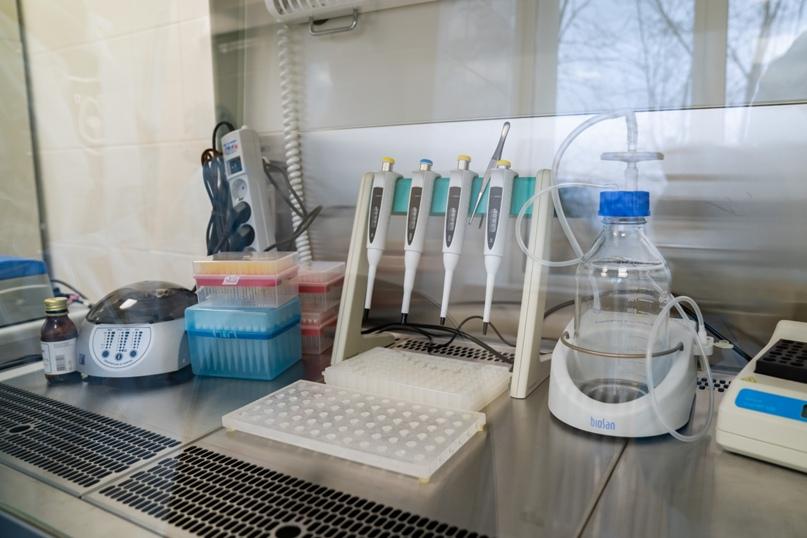 В Ухте открыли лабораторию для исследований на COVID-19, изображение №9