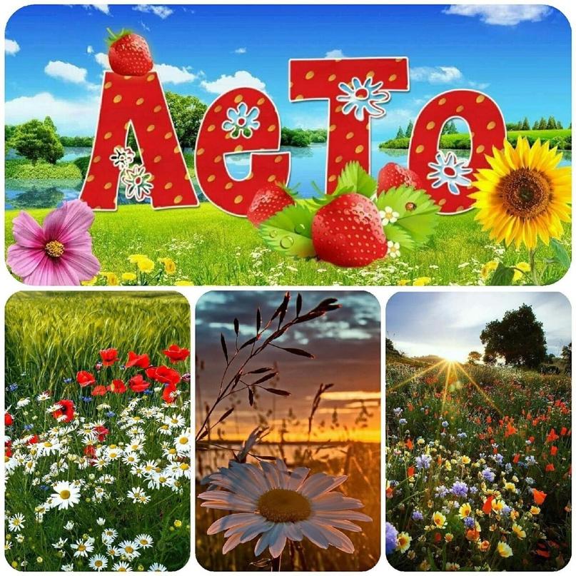 #календарь@slaviane #природа@slaviane #праздники@slaviane #поговорки #лето