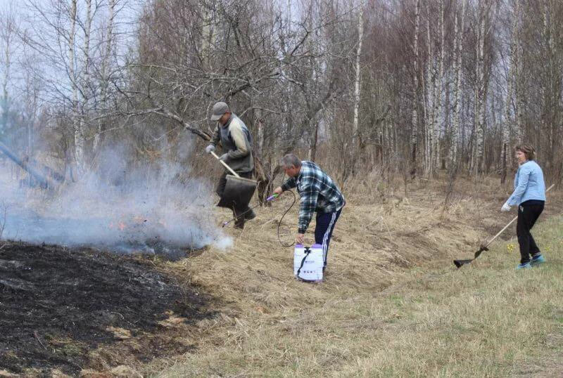 В Курске оштрафовали пятерых горожан, сжигавших траву и мусор