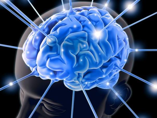 Повышаем работоспособность мозга