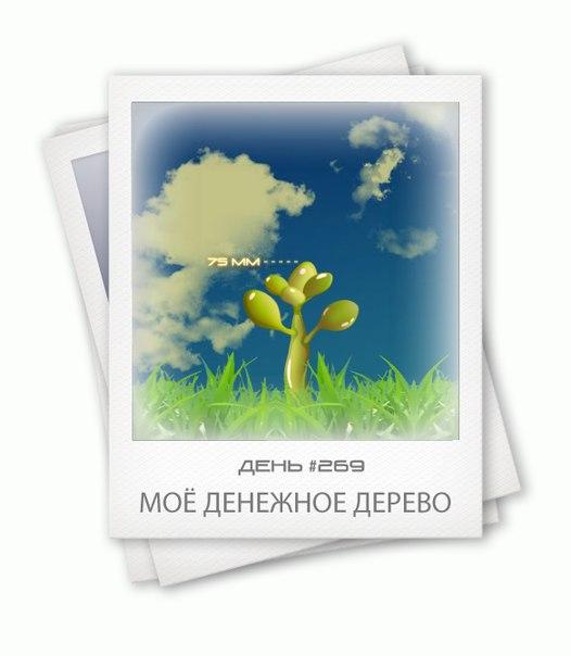 анђели поздравления при дарении денежного дерева утро раннее, спать