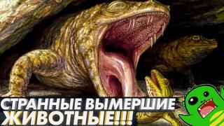 СТРАННЫЕ ВЫМЕРШИЕ ЖИВОТНЫЕ: змея с четырьмя ногами, лягушка-крокодил и новая попытка сухопутности