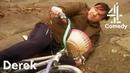 Learning To Ride A Bike | Derek | Channel 4 Comedy