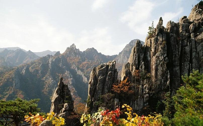 Причины посетить Южную Корею, изображение №5