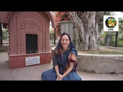 Отзыв5 о курсе Бхакти-шастри в VIHE (Кишори д.д.)
