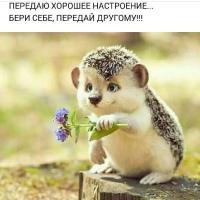 Фото Наты Ивановой