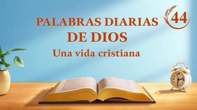 Palabras diarias de Dios Fragmento 44 El Salvador ya ha regresado sobre una 'nube blanca'
