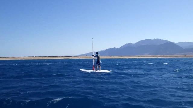 Windsurfing in Egypt · coub, коуб