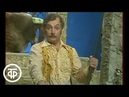Татьяна Шмыга и Михаил Державин исполняют дуэт Мариэтты и Филиппа из оперетты И.Кальмана Баядера