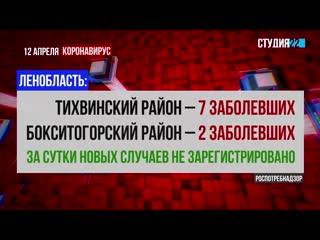 Коронавирус: информация по Бокситогорскому району на 12 апреля